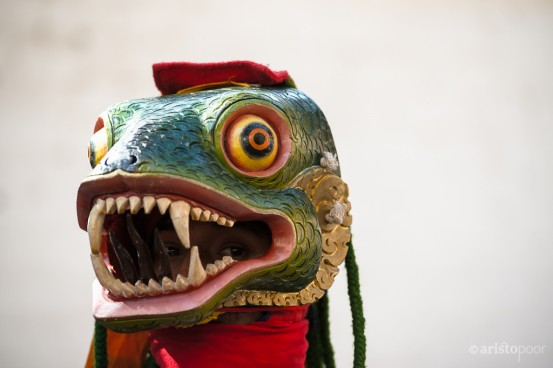 "Bhutanese Snake Mask representing one of the ""Three Poisions,"" hatred."